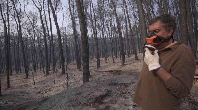 Vesuvio in fiamme, danni ingenti (Lapresse)