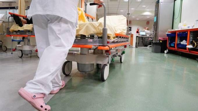 Infermieri, ospedali, pronto soccorso (foto d'archivio)