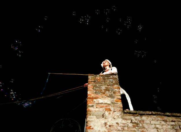 Foto Gianni Nucci/Fotocronache  Germogli