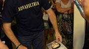 Matteo Salvini a Galeata (foto Frasca)