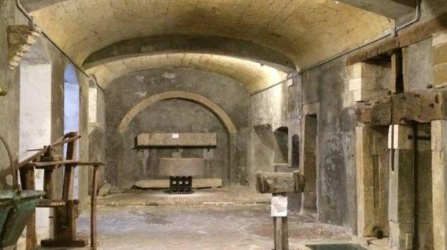 Museo Antico Frantoio