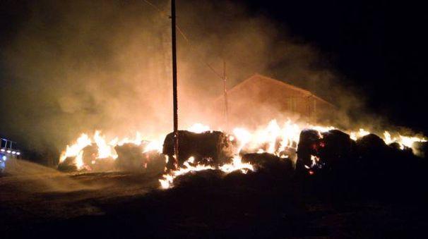 Francavilla d'Ete, violento incendio divora 150 rotoballe (foto Zeppilli)