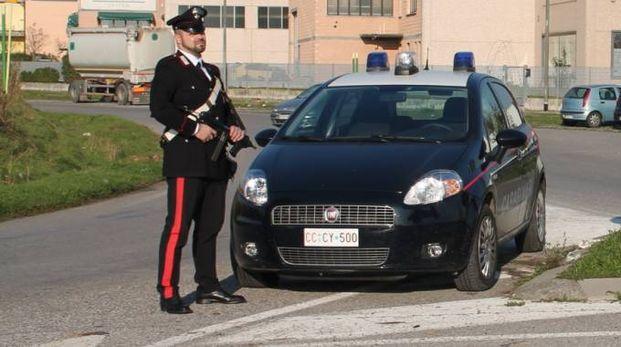 L'operazione è stata portata a termine dai carabinieri di Manerbio