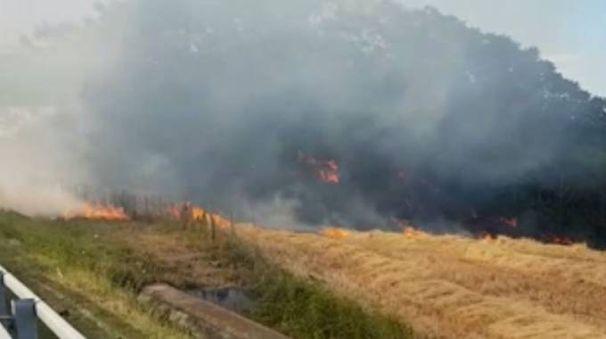 Porto Potenza, grosso incendio vicino all'autostrada A14