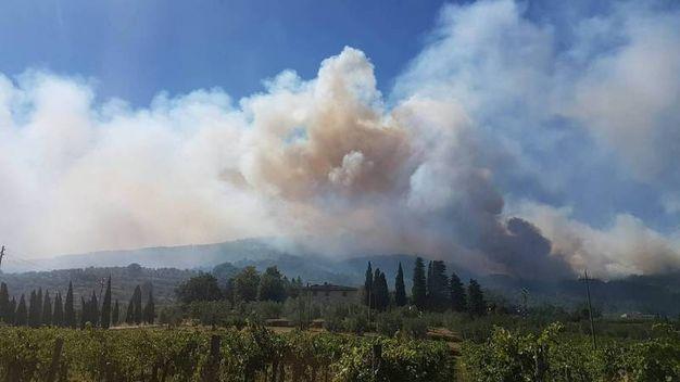 L'incendio di Fognano