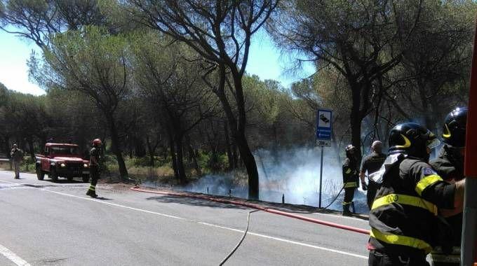 L'incendio della Fiumara nella mattinata di lunedì 17 luglio