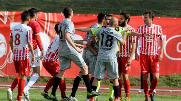 IN CAMPO  Un'immagine dei giocatori della Maceratese contro  il Teramo (foto Calavita)
