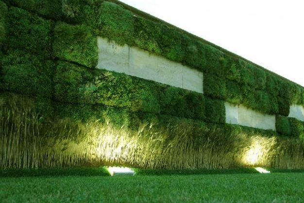 I vantaggi delle pareti verdi verticali magazine tempo for Pareti verdi verticali