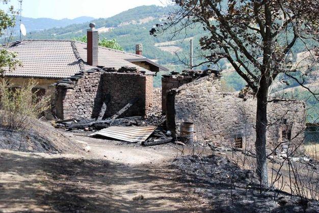 L'incendio a Valdalbero oggi (Foto Milena Vanoni)