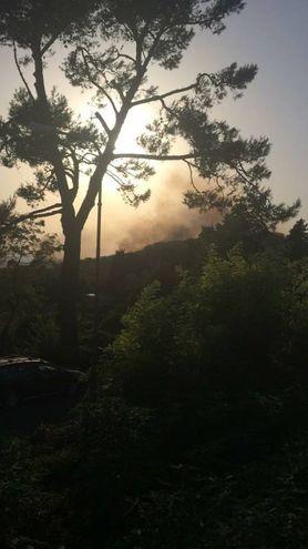 L'incendio ha interessato boschi e campi (Fotoprint)