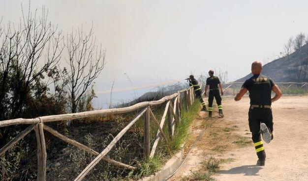 I pompieri accorsi sul luogo dell'incendio (Fotoprint)