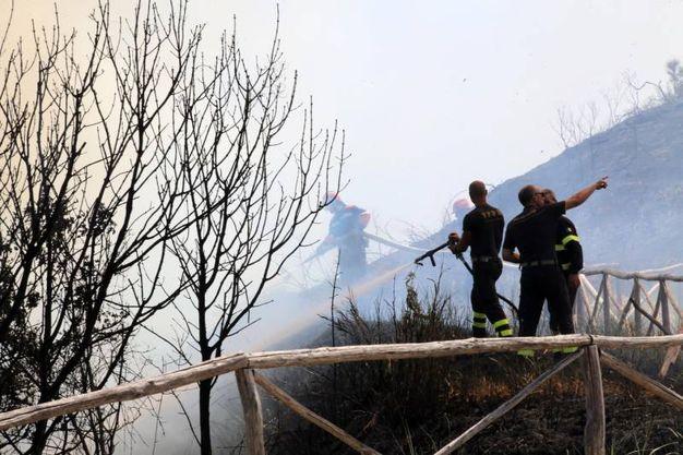 La strategia di contenimento adottata dai vigili del fuoco ha salvato Fiorenzuola e Casteldimezzo (Fotoprint)