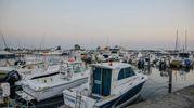 Tragedia all'Isola di Albarella, il mare più 'in' della costa polesana (Foto Donzelli)