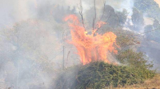 Incendio a Montecodruzzo (foto Ravaglia)