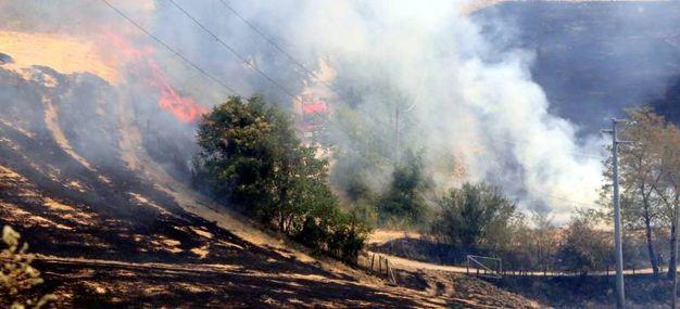 I danni lasciati sul territorio (foto Ravaglia)