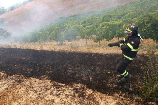 Pompieri in azione  (foto Ravaglia)