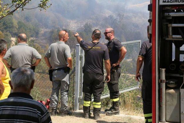 I vigili del fuoco oganizzano l'intervento  (foto Ravaglia)
