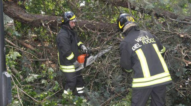Maltempo: numerosi gli interventi dei pompieri