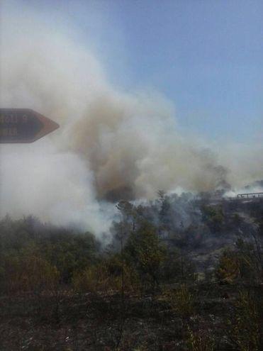 L'incendio di Radicondoli (Foto La Racchetta di Sovicille e Chiusdino)