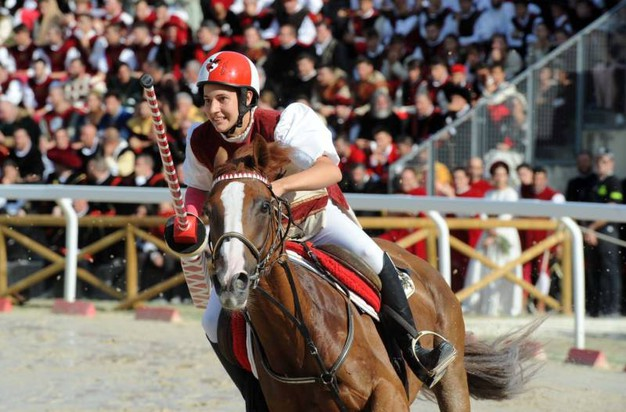 Cavaliere Piazzarola (foto Labolognese)