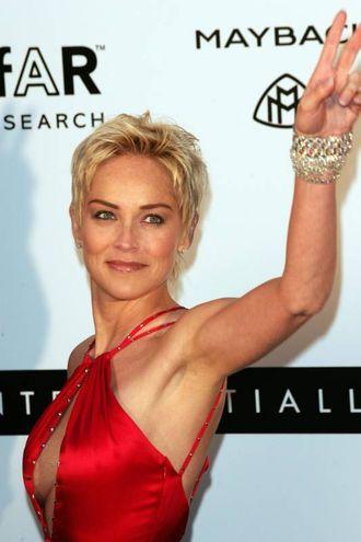 Sharon Stone nel 2009 (Ansa)