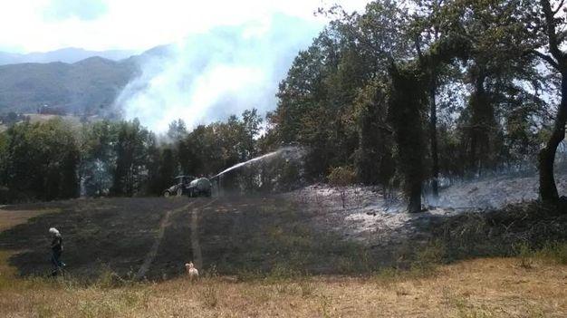 L'incendio che si è sviluppato tra Fanano e Sestola