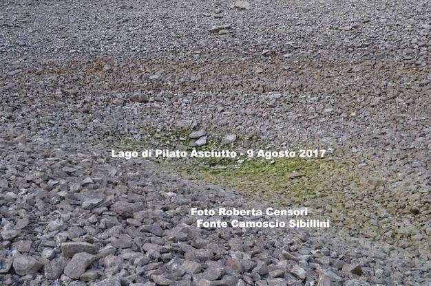 9 agosto 2017: ecco cosa resta del lago