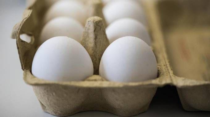 Una confezione di uova (Ansa)