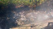 Sul posto sono subito arrivati i vigili del fuoco (Foto Cruciani)