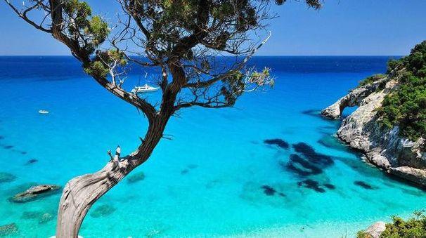 Una spiaggia della Sardegna (Ansa)