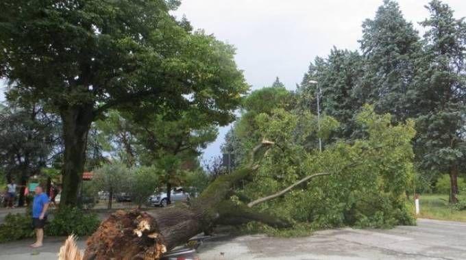 I danni del maltempo del 10 agosto