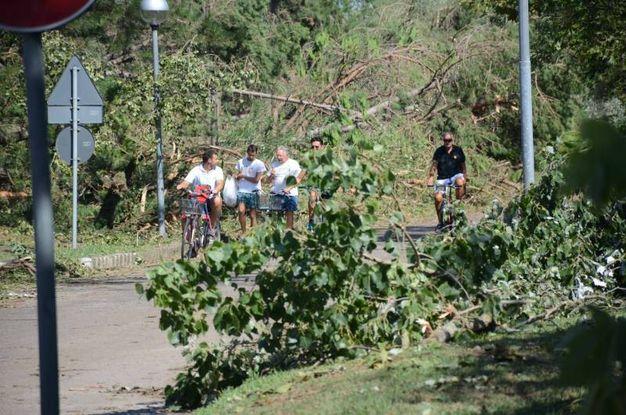 Il giorno della conta dei danni (foto Donzelli)