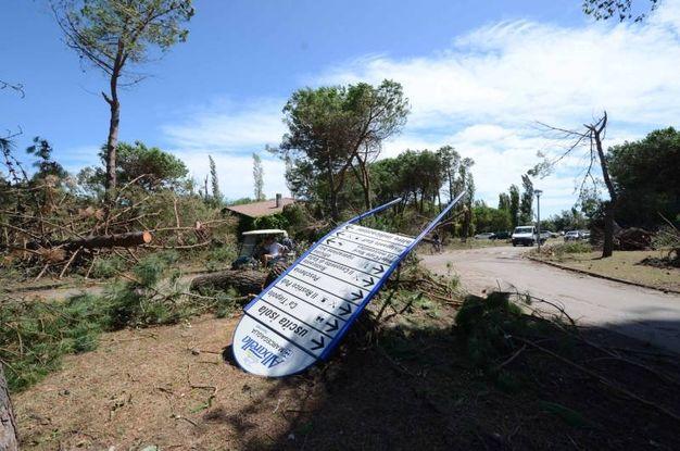 Rovigo, gravissimi danni per il maltempo (foto Donzelli)