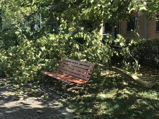 Udine colpita dal maltempo (Ansa)