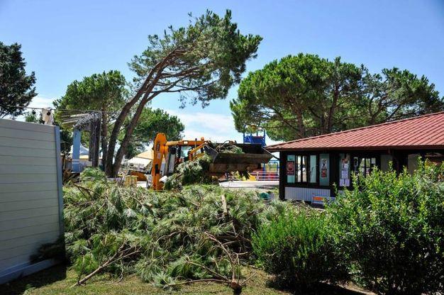 I danni del maltempo nel camping Mediterraneo di Cavallino-Treporti, in Veneto (Lapresse)