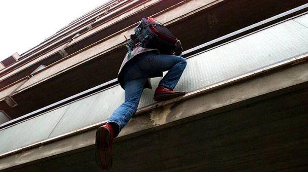 Un ladro acrobata in azione in un'immagine di repertorio (Germogli)