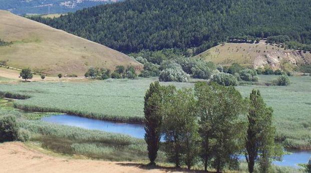 Oasi nel Parco di Colfiorito (foto Wikipedia)