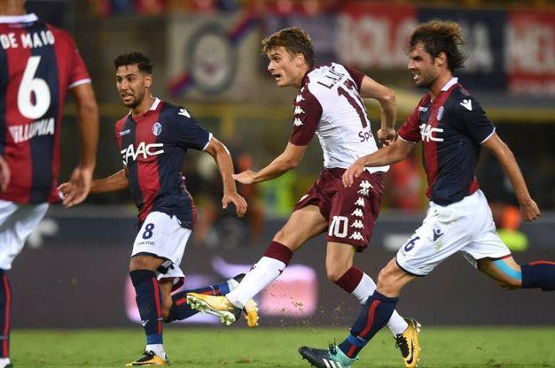 Bologna-Torino 1-1, Ljajic (Lapresse)