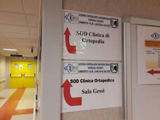 Il reparto di Ortopedia di Torrette (Foto Ansa)