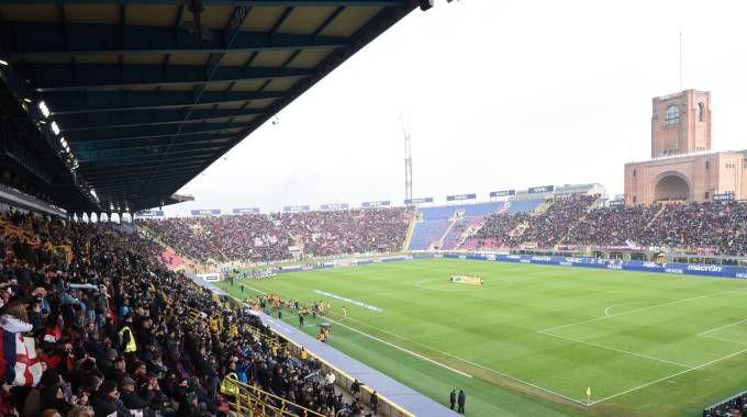 Il restyling delo stadio Dall'Ara è in cima ai pensieri del patron Saputo, ma il percorso è irto di ostacoli