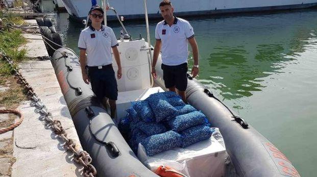 Le vongole sequestrate sono state ributtate in mare