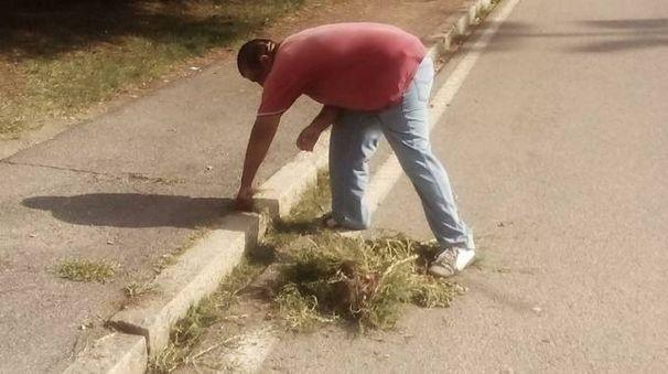 Marian mentre ripulisce il manto stradale