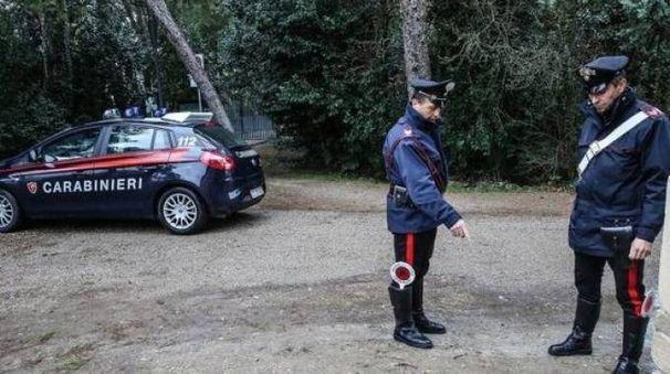 Le indagini dei carabinieri al parco Miralfiore (Fotoprint)