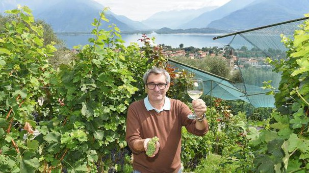 Il viticoltore Daniele Travi dell'azienda Sorsasso