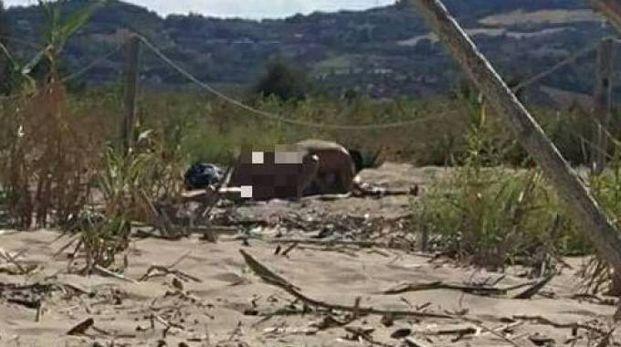 Sesso in spiaggia: lo scatto pubblicato su Facebook