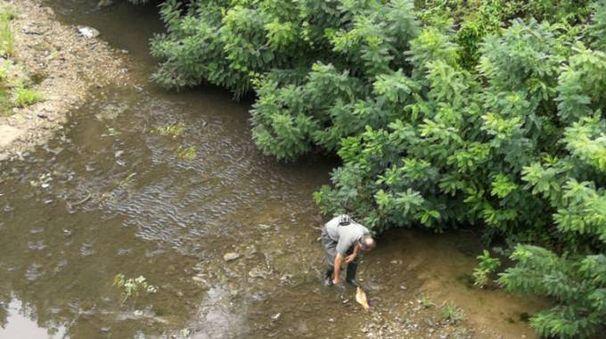 Un operatore di Arpae sul letto del fiume