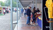 La Fiera Campionaria di  Varese, giunta alla 40esima edizione (Newpress)