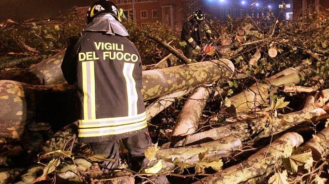 Per liberare le strade sono intervenute in supporto squadre dei vigili del fuoco anche da Siena, Arezzo e Grosseto