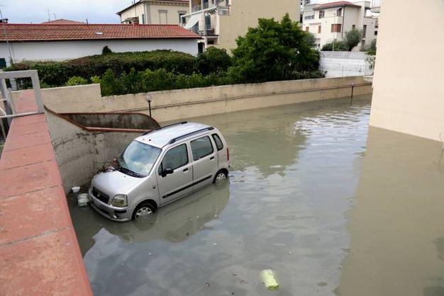Maltempo a Pisa (foto Valtriani-Teta)