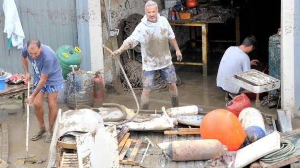 I danni dell'alluvione (foto Novi)